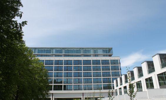 Tammiharjun Sairaala